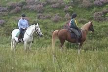 Horse riders on the Pennine Bridleway, Peak District, Derbyshire section