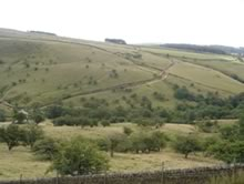 Characteristic view over the Peak District countryside.