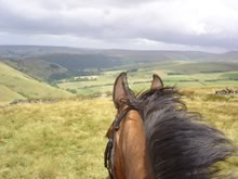 View from on a horse along the Pennine Bridleway.